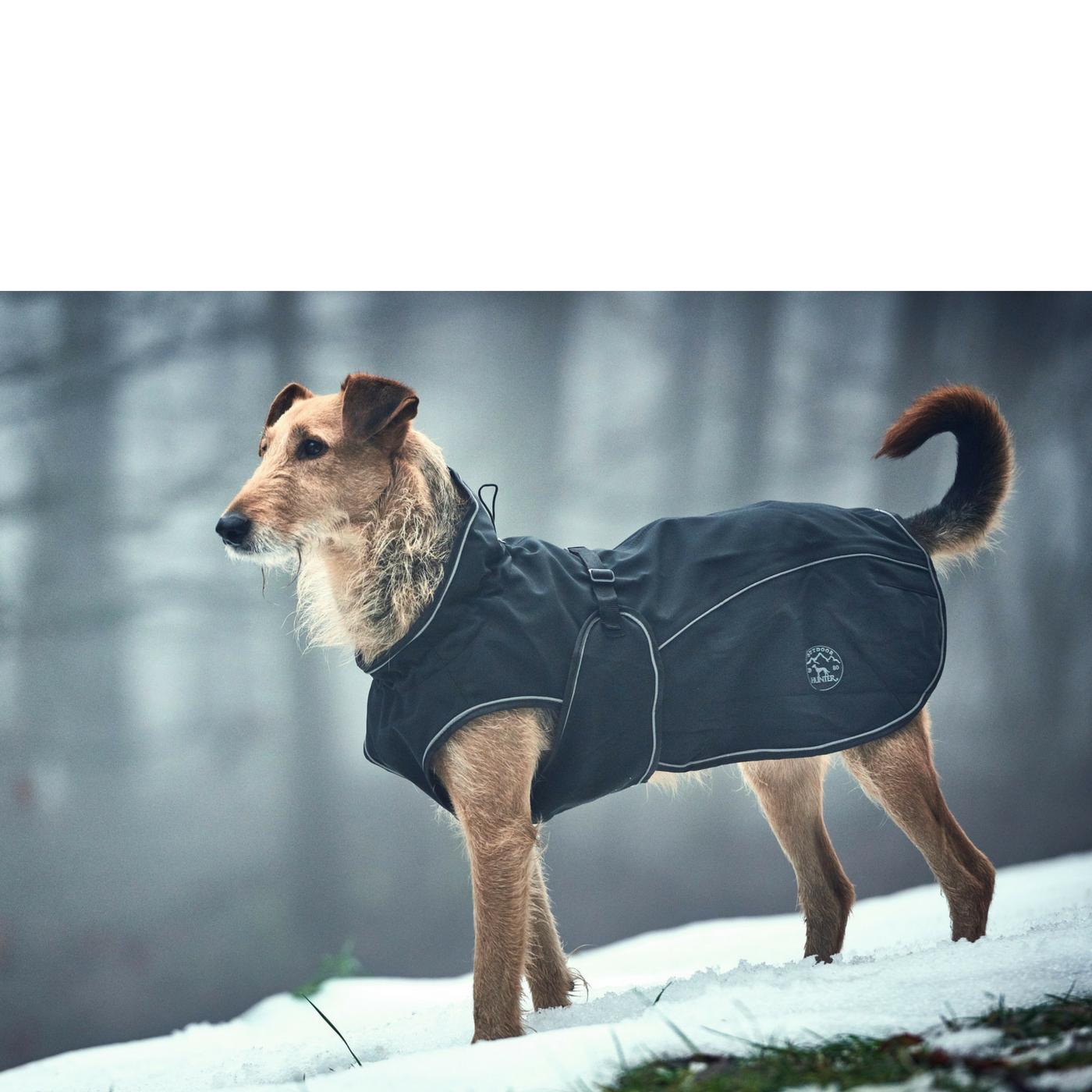 Cappottino Uppsala Hunter per Cani Nero - GEA Pet Shop - 16b26baf5269