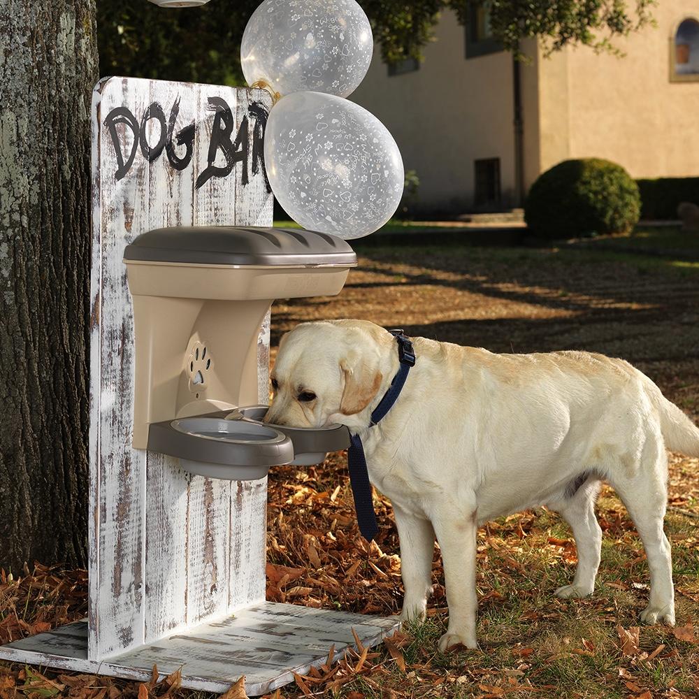 réflexions sur offres exclusives bien connu Ciotole Food Stand Maxi per Cani Bama Pet